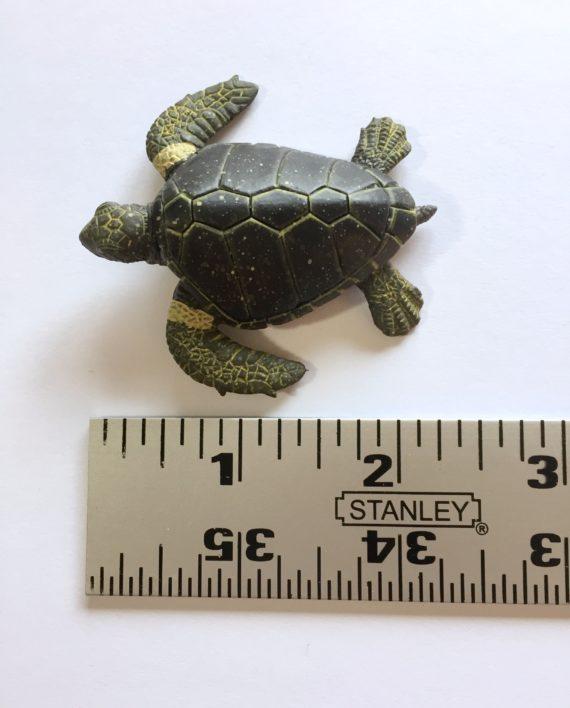 turtle ID 2