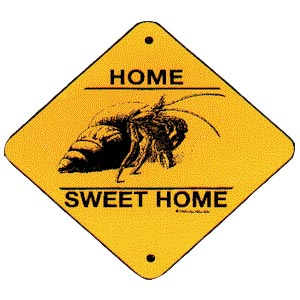 hermit crab crossing zone sign