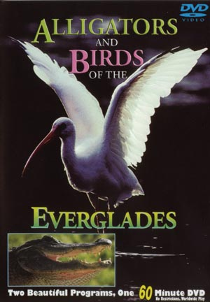 everglades birds and alligators DVD
