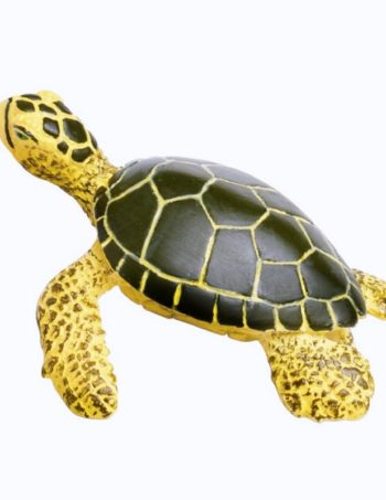 safariltd-green-sea-turtle-baby-201329-0