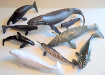 set of 9 whales